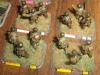 US parachute rifle company11.JPG
